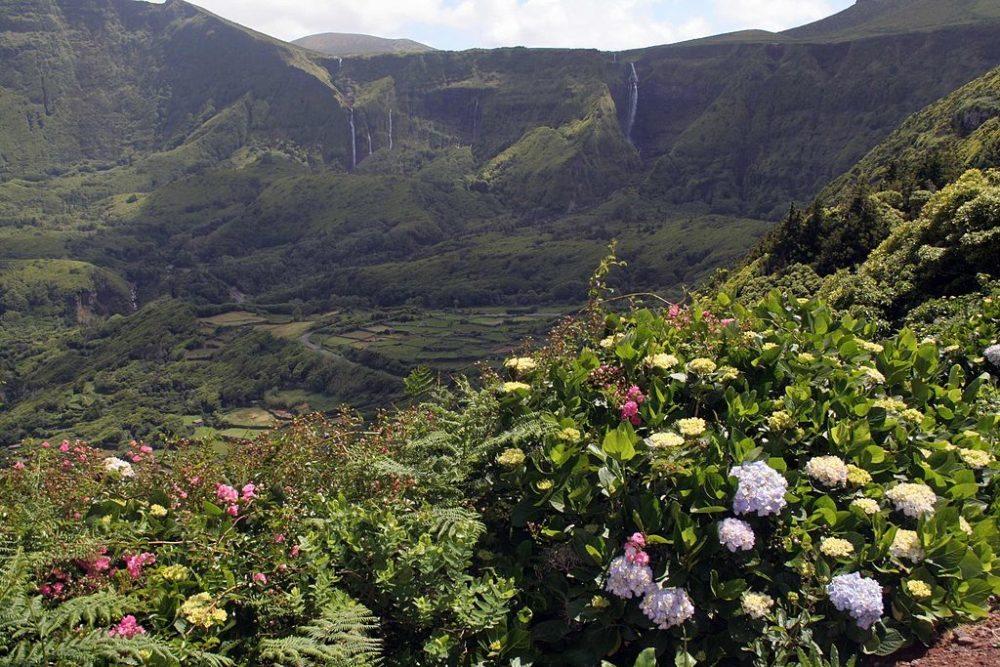 """Flores, Bergmassiv oberhalb Faja Grande. (Urheber: Björn Ehrlich / Wiki / Lizenz: <a href=""""http://de.wikipedia.org/wiki/GNU-Lizenz_f%C3%BCr_freie_Dokumentation?uselang=de"""" target=""""_blank"""">GNU</a>)"""
