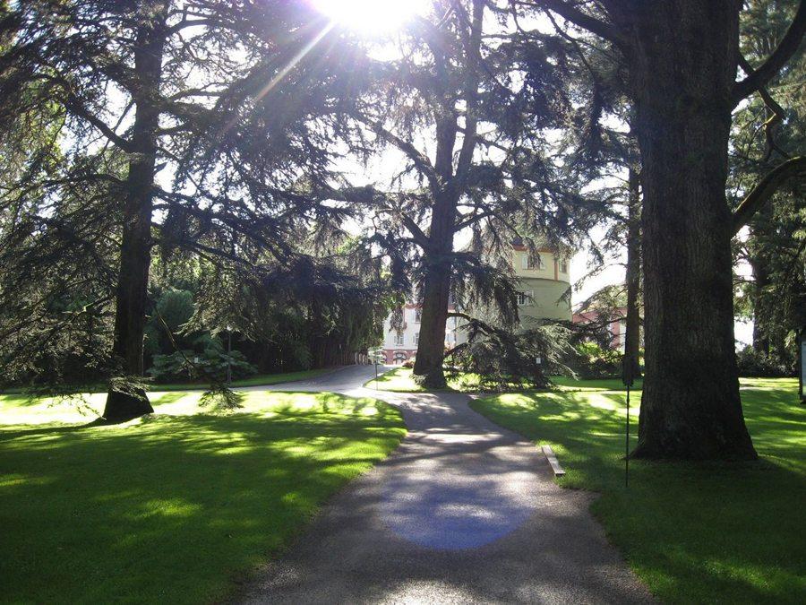 Das Arboretum (Bild: Insel Mainau)