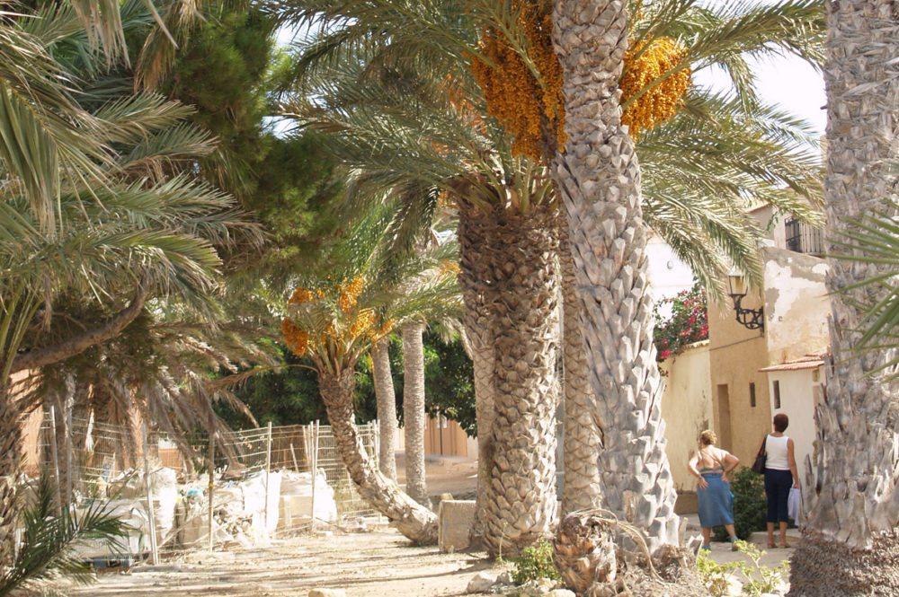 In der Altstadt von Tabarca (Bild: Natalia Muler)