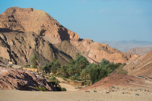 Die Wüste Sinai - facettenreich und überwältigend. (Bild: © Efim Chernov - shutterstock.com)