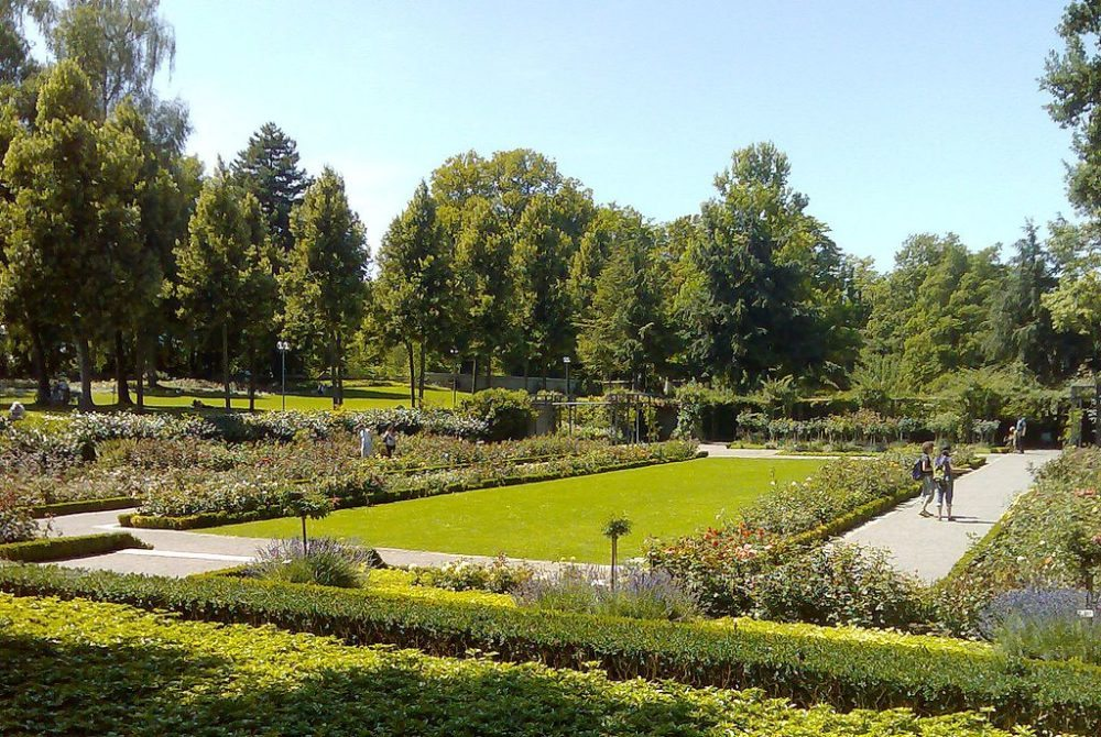 """Rosengarten in Bern. (Urheber: Schofför / Wiki / Lizenz: <a href=""""http://creativecommons.org/licenses/by-sa/3.0/deed.de"""" target=""""_blank"""">CC</a>)"""