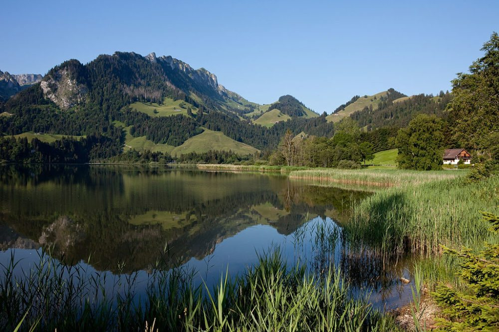 "Schwarzsee / Lac Noir, Kanton Freiburg. (Urheber: Roland Zumbuehl / Wiki / Lizenz: <a href=""https://creativecommons.org/licenses/by-sa/3.0/deed.en"" target=""_blank"">CC</a>)"