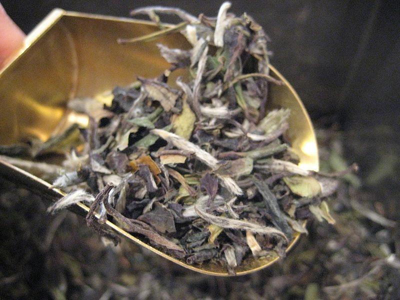 Weißer Tee (Bild: Selena N.B.H., Wikimedia, CC)