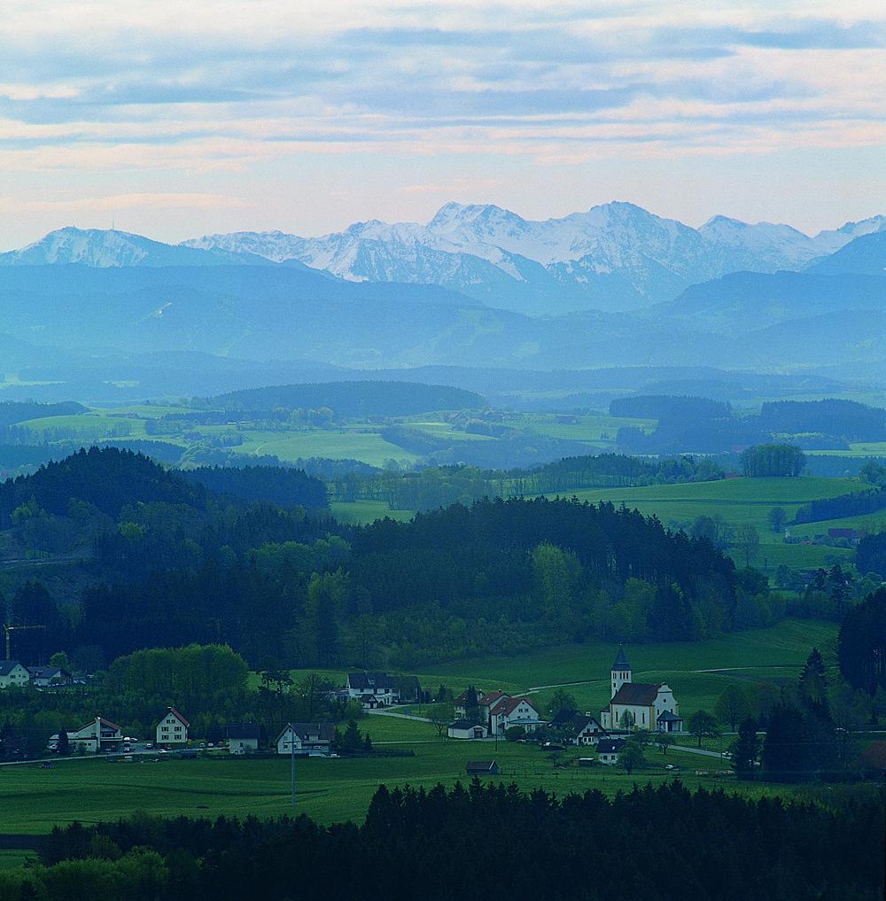 Hannober bei Waldburg (Bild: Gemeinde Waldburg)