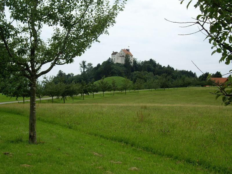 Obstlehrpfad (Bild: Gemeinde Waldburg)