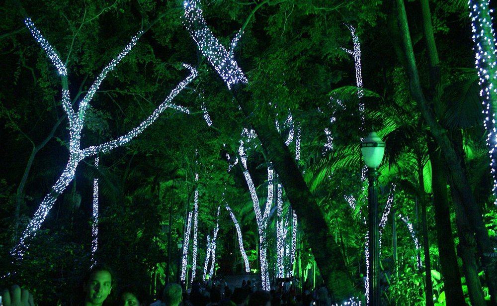 Park Trianon in São Paolo in der Weihnachtsstimmung (Bild: lucaaz, Wikimedia, CC)