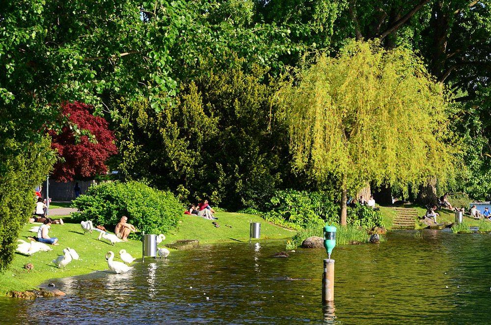 Badende am Zürichsee (Bild: Ronald zh, Wikimedia, CC)