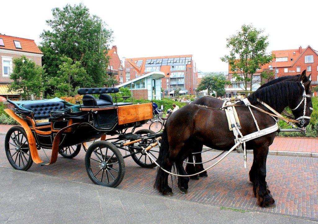 Auf Juist dominieren die Kutschen. (Bild: Rike / pixelio.de)