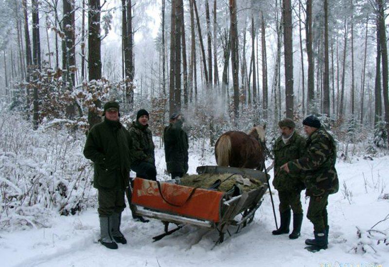 """Schlittenfahrt durch masurischen Wald (Bild: ©Landhaus-Pension """"Krutynska Chata"""")"""