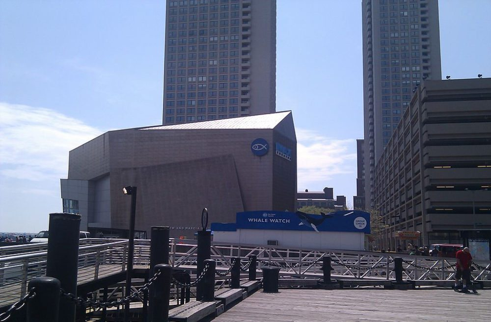 New England Aquarium in Boston (Bild: Robert Stern, Wikimedia, CC)