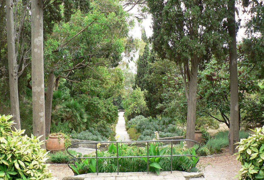 Üppige Vegetation im Botanischen Garten Hanbury (Bild: Fabio Alessandro Locati, Wikimedia, CC)