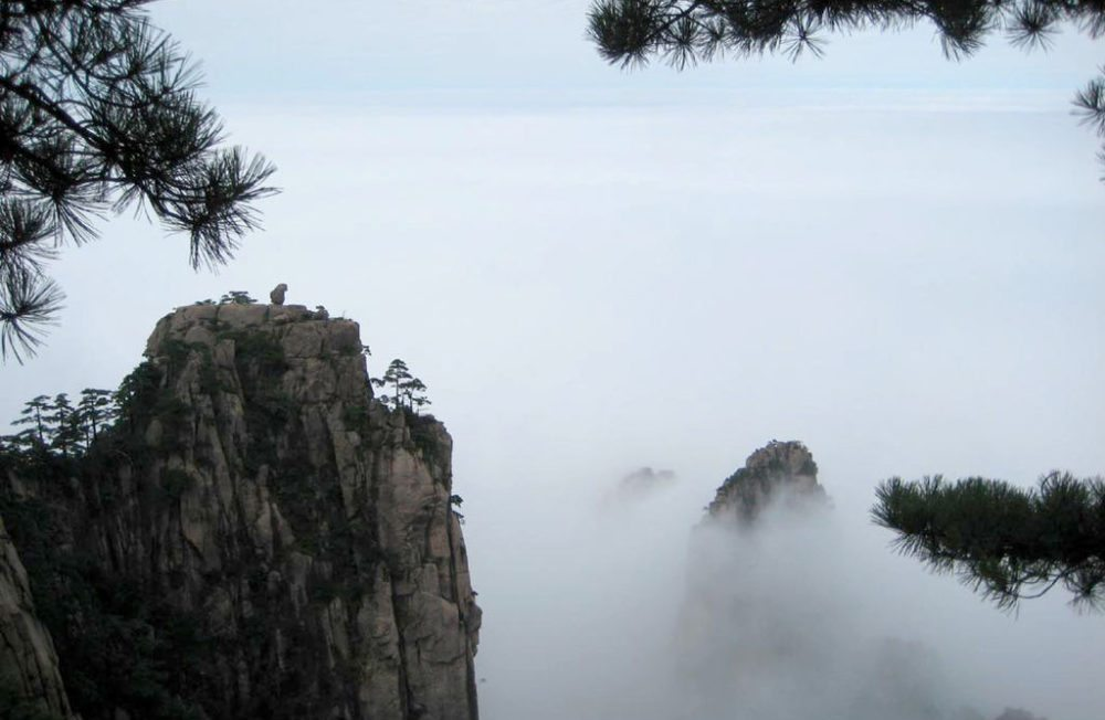 Ein Affe bestaunt gedankenversunken das Wolkenmeer (Bild: Mätes II., Wikimedia, CC)