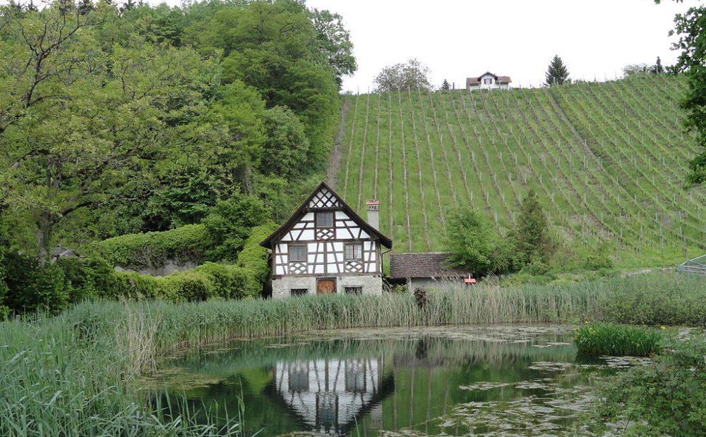 Rebhaus in  Kartause Ittingen (Bild:  Parpan05, Wikimedia, CC)