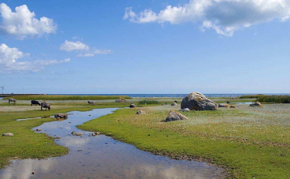 Sonniger Tag auf der Insel Gotland (Berit, Wikimedia, CC)