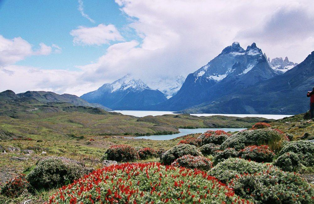 Landschaft von Patagonien (Bild: Silke Bachmann  / pixelio.de)