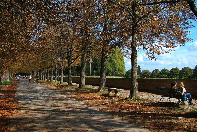 Promeniermeile - La passeggiata delle mura in Lucca (Bild: Tango7174, Wikimedia, CC)