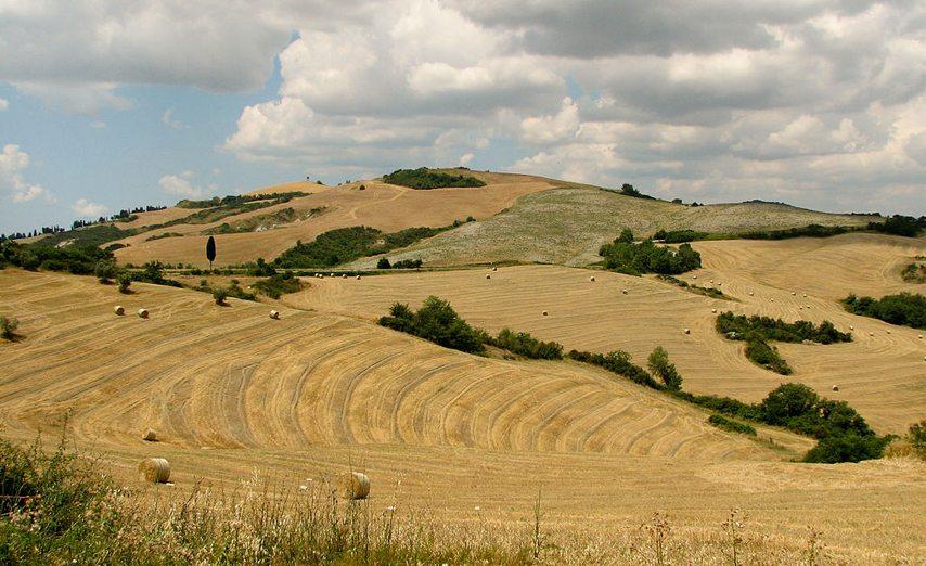 Toskanische Landschaft (Bild: Norbert Nagel, Wikimedia, CC)