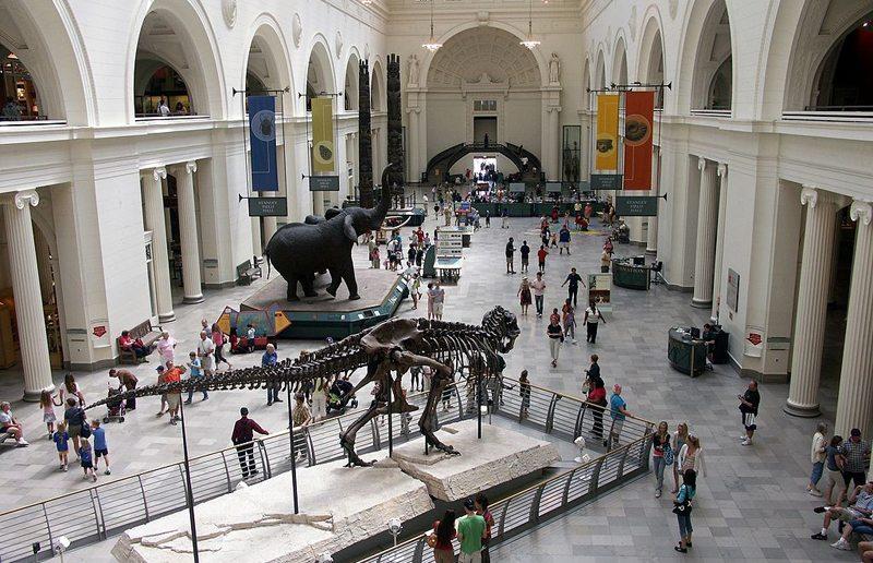 Innenansicht des Chicago Field Museum (Bild: KiwiDeaPi, Wikimedia, CC)