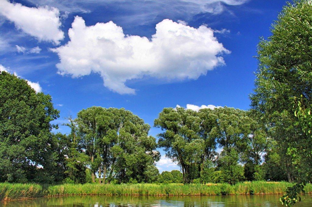 Landschaftsfoto mit durchdachter Anordnung (Bild: detlef menzel  / pixelio.de)