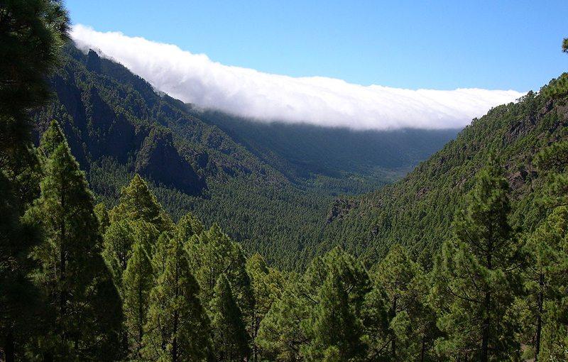 Passatwolken über der Cumbre Nueva (Bild: Luc Viatour, Wikimedia, CC)