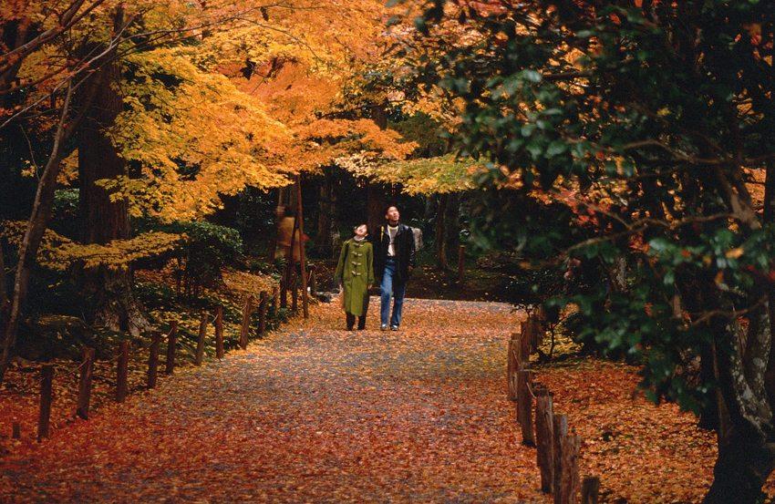 Spaziergang im Garten von Ryoanji-Tempel (Bild: Fg2, Wikimedia)