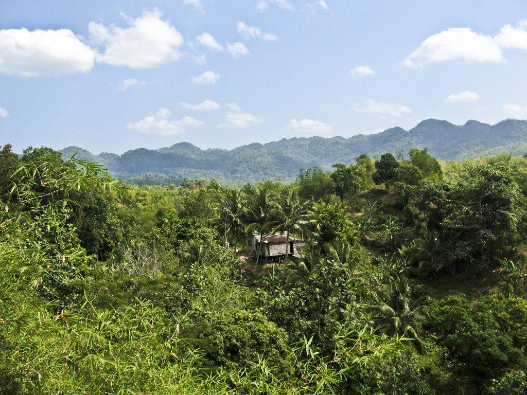 Blue Mountains im Osten von Jamaika (Bild: Michael Lorenzet  / pixelio.de)