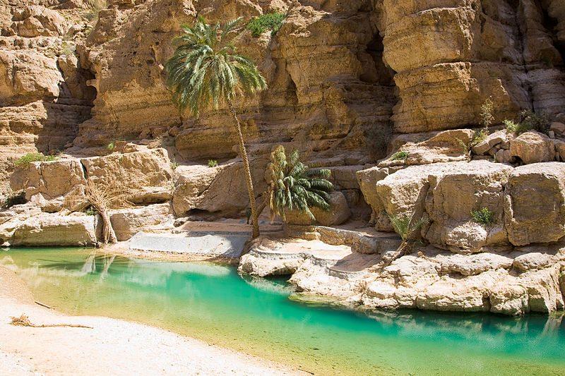 Ausflug zum Wadi Shab (© Andries Oudshoorn / Wikimedia / CC)