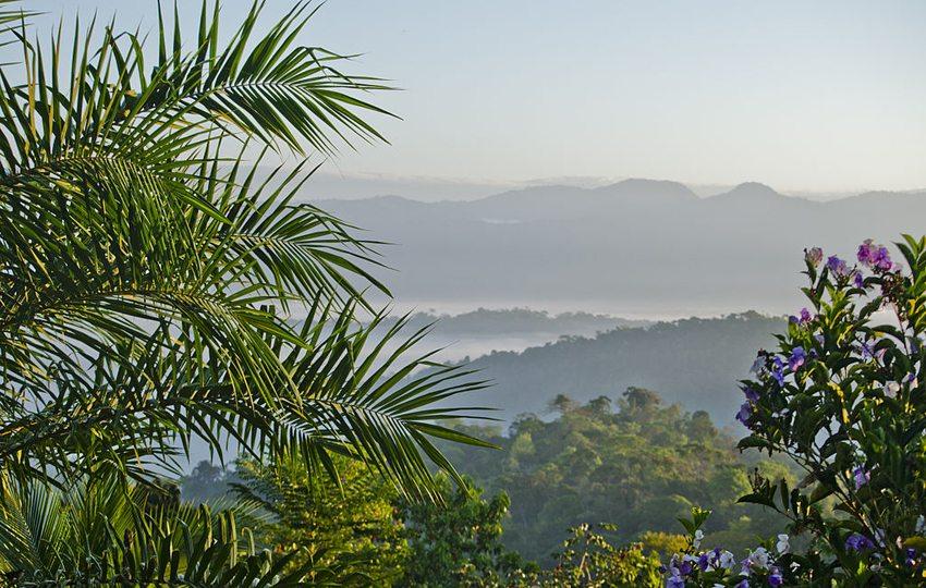 Die Pracht der Natur in Costa Rica (Bild: chuck624, Wikimedia, CC)