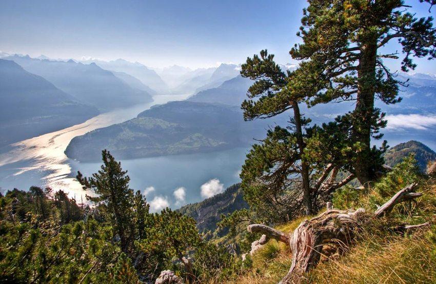 Blick auf den Vierwaldstättersee in der Nähe von Luzern (Bild: Jo in Riederalp, Wikimedia, CC)