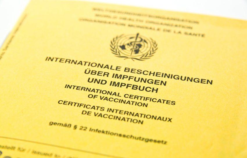 Impfpass gibt über Basisimpfungen Auskunft (Bild: Micha Rosenwirth / Shutterstock.com)