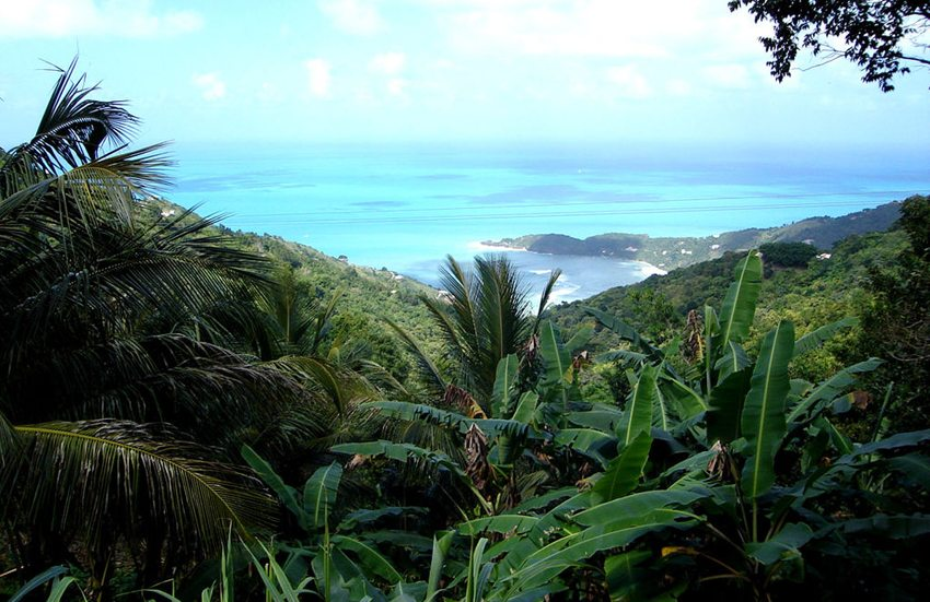 Tortola – ehemalige Pirateninsel in paradiesischer Umgebung. (Bild: Henry A-W, Wikimedia, CC)