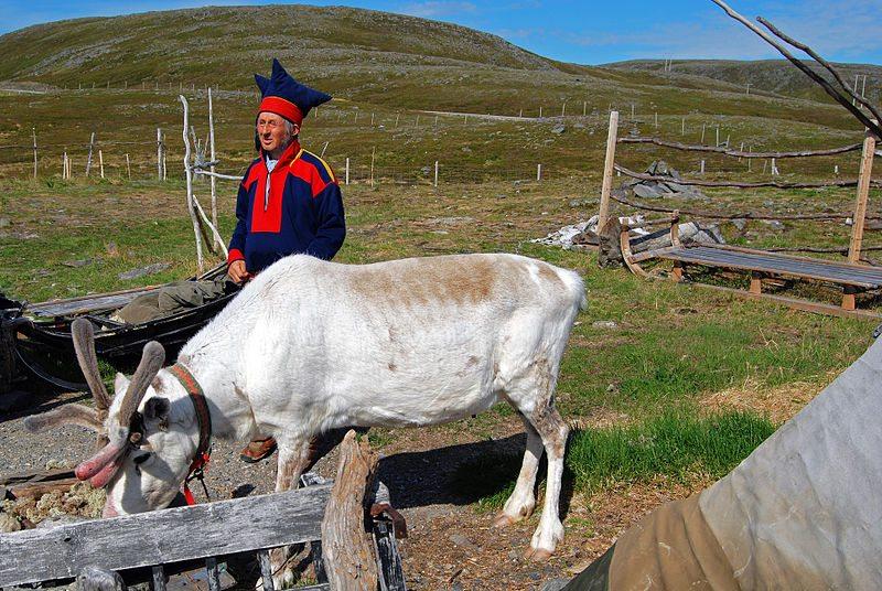 Traditionell gekleideter Sámi mit Rentier (© Harvey Barrison / Wikimedia / CC)