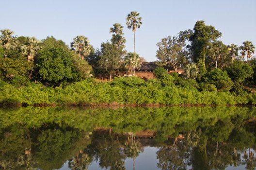 Gambia Fluss Niokolo (Bild: © antpun - shutterstock.com)