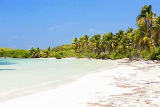 ährend eines geführten Tagesausflugs kann das Naturreservat der unbewohnten Insel Contoy besucht werden (Bild: © Maciej Czekajewski - shutterstock.com)