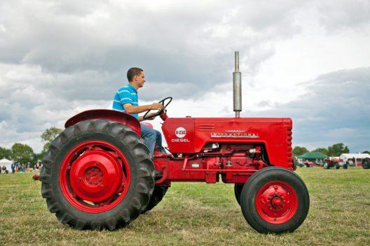 Immer etwas zu entdecken: mit Kindern auf dem Bauernhof (Bild: LandFox - shutterstock.com)