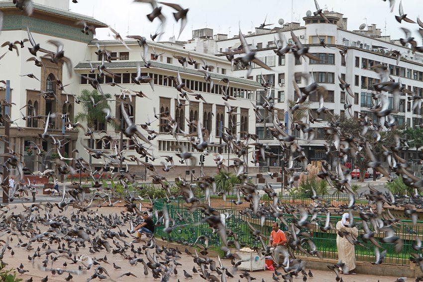 Mohammed-V.-Platz in Casablanca(Bild: Didier55, Wikimedia, CC)
