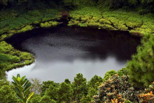 Der Krater Trou aux Cerfs (Bild: © lkpro - shutterstock.com)