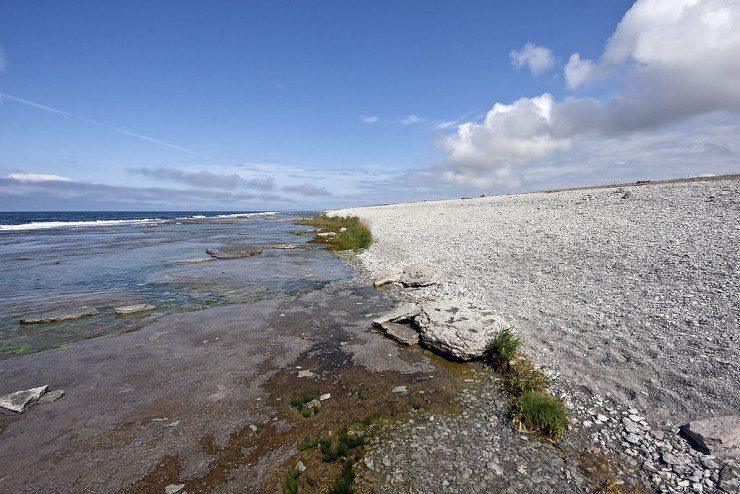 Naturreservat Neptuni åkrar im Norden von Öland (© David Castor / Wikimedia / public domain)