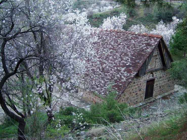 Weltkulturerbe unter Kirschbäumen: historische Kirche von Stavros Agiasmati (© Chneophytou / Wikimedia / CC)