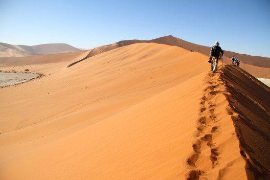 Dünen in Namibia (Bild: Hector-Ruiz-Villar – shutterstock.com)