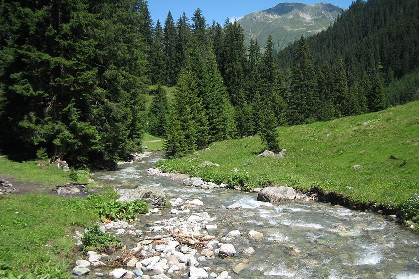 Stützbach zwischen Klosters und Davos-Laret (Bild: Adrian Michael, Wikimedia, GNU)