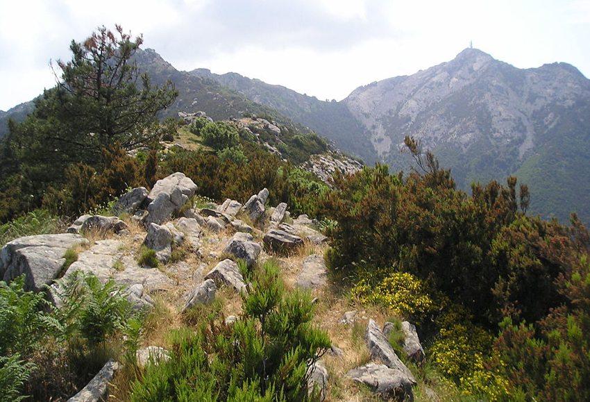 Monte Capanne – der höchste Berg Elbas (Bild: Contradictus, Wikimedia, GNU)