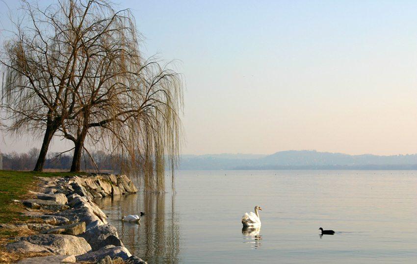 Beliebtes Ausflugsziel – Lago di Varese (Bild: Alessandro Vecchi, Wikimedia, CC)