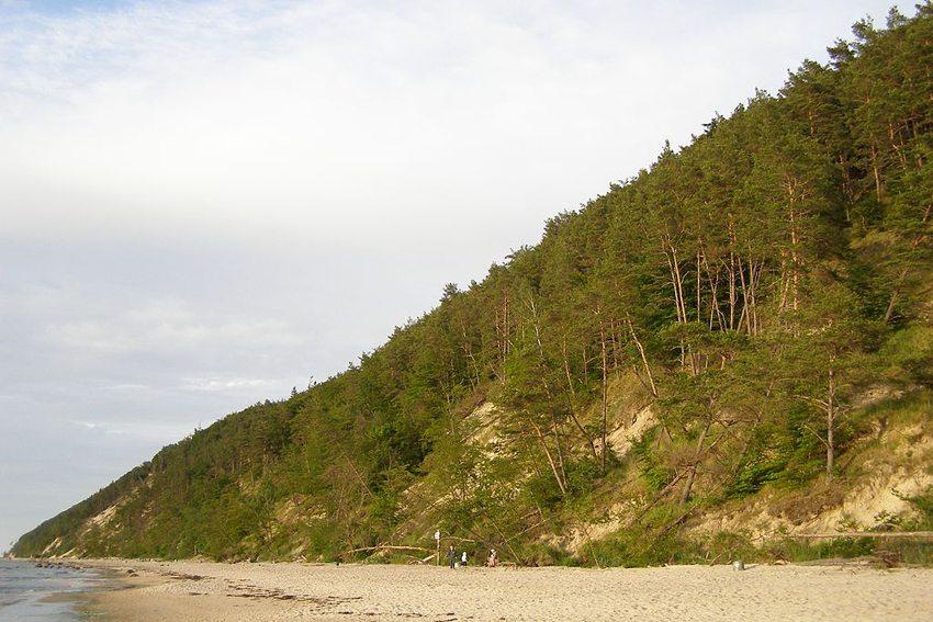 Im Nationalpark auf der Insel Wolin (Bild: Andrzej Otrębski, Wikimedia, CC)