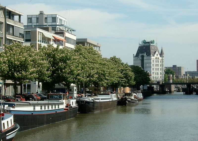Het Witte Huis in Rotterdam (Bild: Quistnix, Wikimedia, CC)