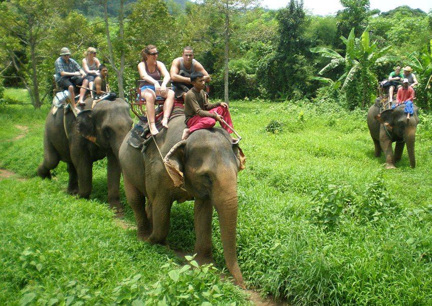 Elephant trekking auf Ko Chang (Bild: Éclusette, Wikimedia, GNU)