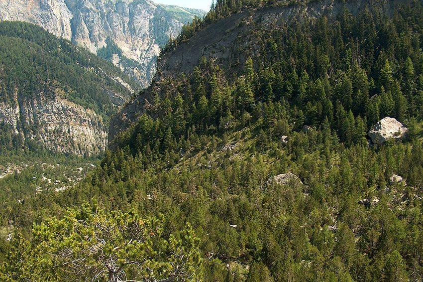 Blick ins Tal von Derborence (Bild: Johannes Löw, Wikimedia, CC)