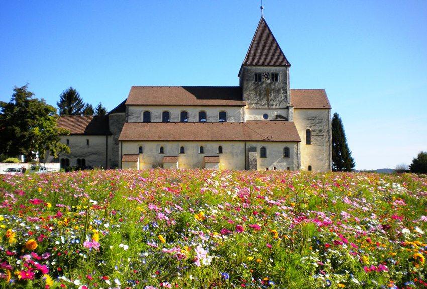 Blumenwiese vor der Klosterkirche St. Georg, Reichenau (Bild: See58, Wikimedia, GNU)