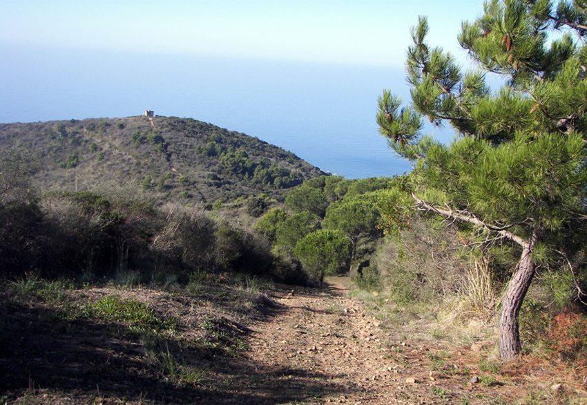 Wandern zum Monte Licosa (Bild: Gabriele Pinto, Wikimedia)