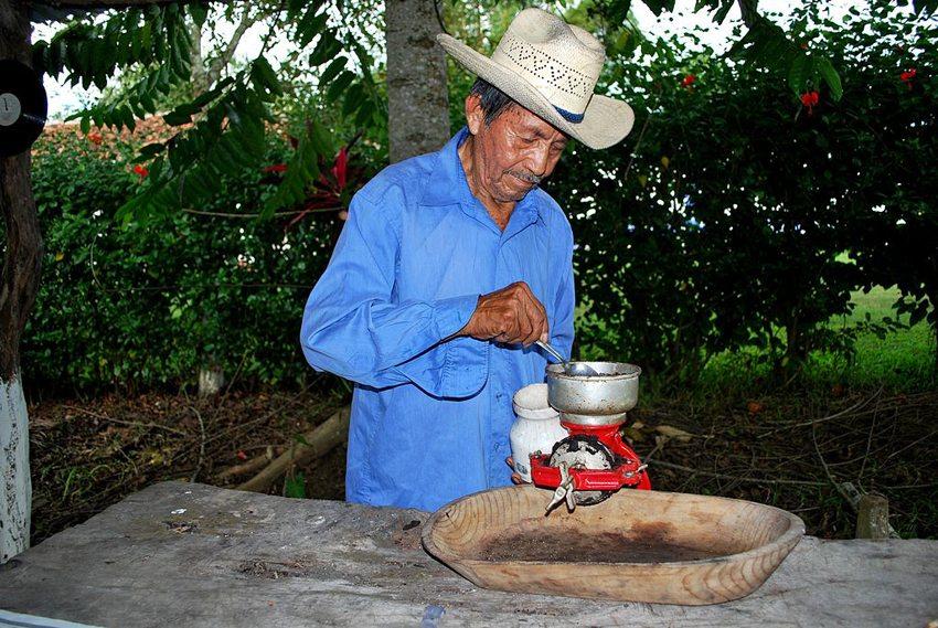 Auf einer kleinen Kakao-Hacienda lernen Sie die Arbeitsschritte hautnah kennen. (Bild: AlejandroLinaresGarcia, Wikimedia, CC)
